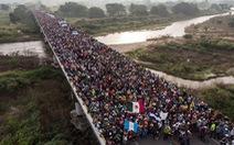 'Binh đoàn' di cư chi phối bầu cử Mỹ như thế nào?
