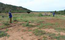 Phó chủ tịch xã bán và 'hợp thức hóa' cả chục ha đất rừng