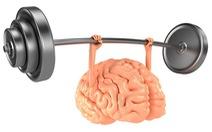 Tăng cường sức khỏe cho não bộ