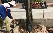 Phá dỡ bồn hoa xây trái phép tại Mường Thanh Khánh Hòa