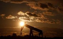 Giá dầu chạm đáy thảm hại trong 3 năm qua