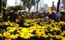 Chợ hoa Tết Kỷ Hợi 2019 tổ chức ở 3 công viên lớn tại TP.HCM