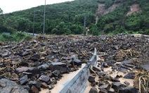 Đường sắt, quốc lộ 1 tê liệt vì mưa ngập