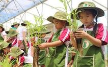Thành phố giáo dục Quốc tế Quảng Ngãi sẽ tuyển sinh trong năm học tới