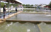 Bộ TN-MT khẳng định đủ nước để 'giải khát' Đà Nẵng