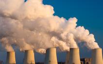 Cây xanh trên trái đất không đủ lọc hết lượng CO2 đang có
