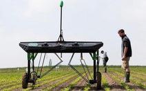 Máy diệt cỏ thế hệ mới sử dụng trí tuệ nhân tạo giúp bảo vệ cây trồng