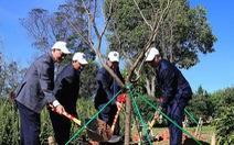 Trồng 125 cây hoa anh đào Nhật Bản tại Đà Lạt