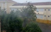 Video gió lớn trong bão số 9 tại Tuy Hòa, Phú Yên