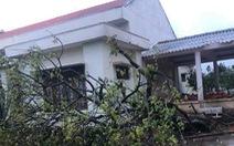 Phú Quý có mưa to, gió giật, cây xanh ngã đổ