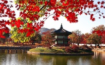 Làm công việc tự do có dễ xin visa du lịch Hàn Quốc?