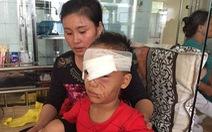 Thanh Hóa: 1 tuần 3 trẻ nhập viện do bị chó nhà nuôi cắn