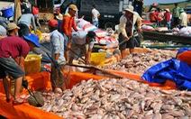 Hỗ trợ 12,2 tỉ đồng cho 129 hộ dân nuôi cá lồng bè trên sông La Ngà
