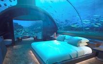 Khách sạn 50.000 USD một đêm ngắm cá mập giữa đại dương