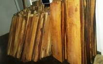 Phát hiện gỗ giấu tại nhà điều hành thủy điện