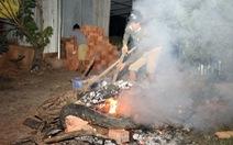 Trăn quấn chết nam thanh niên ở Đồng Nai