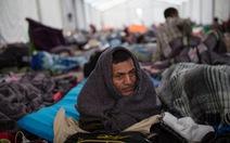 Mỹ sẽ cấm người vượt biên trái phép xin cơ chế tị nạn