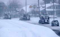 Bão tuyết Mỹ: Cây ngã chết người, hơn 500 vụ tai nạn