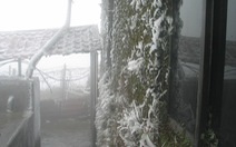Miền Bắc rét đậm 2-3 ngày, Mẫu Sơn có thể xuống 0 độ C