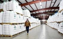 Trung Quốc mua trở lại lượng lớn đậu nành của Mỹ