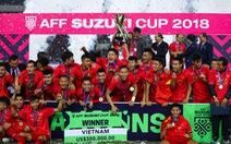 Những khoảnh khắc xúc động trong ngày Việt Nam vô địch AFF Cup