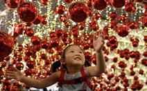 Thế giới rực rỡ ánh đèn đón Giáng sinh