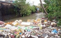 TP.HCM: quyết tâm giảm rác