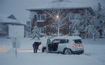 Bão mùa đông ở Mỹ: Hơn 8.000 chuyến bay bị hoãn, hủy