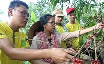 Đường về tự nhiên của nông dân trẻ