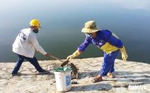 Cá ở hồ điều hòa Cửa Nam chết do nước ô nhiễm