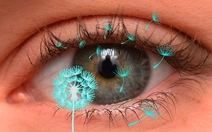 Dị ứng mắt và cách điều trị