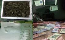 Bắt nữ quái chuyên bán ma túy cho hơn 30 con nghiện
