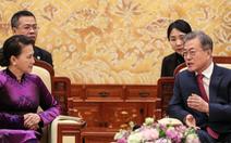 Việt Nam có vai trò quan trọng với Hàn Quốc trong nhiều lĩnh vực