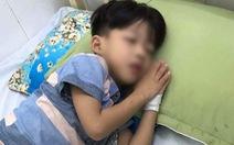 Tin thầy lang, bé trai 5 tuổi bị chó cắn phát bệnh dại tử vong