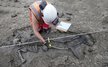Phát hiện bộ xương người 500 năm tuổi dưới cống nước ở Anh