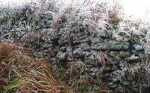 Đỉnh Mẫu Sơn lạnh nhất miền Bắc, giảm còn 5,4 độ C