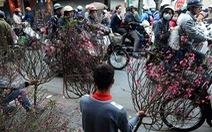 CNN chọn chợ hoa Quảng Bá, Hà Nội trong 14 điểm chơi Tết nổi bật
