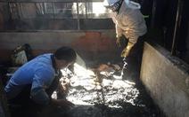 Cháy hai căn nhà ngày 27 tết, người dân bới tro tàn tìm tài sản