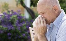 Mùa xuân và bệnh thường gặp ở người lớn tuổi
