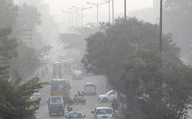 New Delhi trồng cây cải thiện môi trường