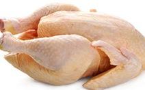 Hàng chục người ngộ độc do ăn thịt gà chết