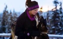 Cô gái xinh đẹp bỏ nghề người mẫu đi chăn chó kéo xe