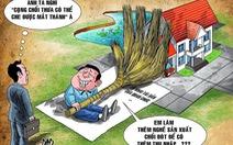 Tài sản bất minh: Dính đến chức vụ thì phải tịch thu