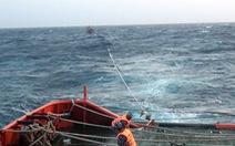 Cảnh sát biển vượt sóng to cứu 9 ngư dân gặp nạn