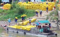 Bỏ gánh nặng cho hạt gạo Việt