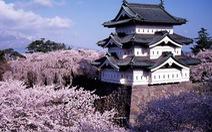 Đi Nhật Bản ngắm hoa anh đào ở đâu đẹp nhất? (phần 2)
