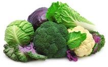 Thực phẩm chống suy kiệt cơ thể cho bệnh nhân ung thư