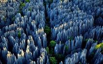 Vẻ đẹp 'rừng đá' Thạch Lâm