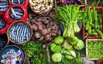 Dinh dưỡng phòng chống lão hóa
