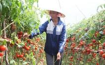 Bộ Nông nghiệp lại kêu gọi giải cứu nông sản